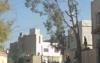 Ağaç Keseyim Derken Mahalleyi Yıkmak
