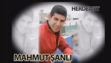 Mahmut Şanlı - Her Demet