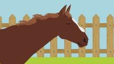 Pony'ye Binen Çocuklar Hangi Seviyeden Sonra Engel Atlar?