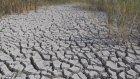 Hafik Gölü kuraklıktan etkilendi - SİVAS