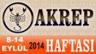 AKREP Burcu HAFTALIK Astroloji Yorumu 8-14 EYLÜL 2014 Astrolog DEMET BALTACI Bilinç Okulu