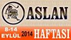ASLAN Burcu HAFTALIK Astroloji Yorumu 8-14 EYLÜL 2014 Astrolog DEMET BALTACI Bilinç Okulu