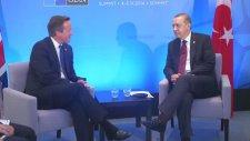 NATO Devlet ve Hükümet Başkanları Zirvesi'nde İngiltere Başbakanı Cameron ile Görüştü