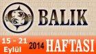 Balık Burcu, Haftalık Astroloji Yorumu, 15-21 Eylül 2014, Astrolog Demet Baltacı Bilinç Okulu Mp4