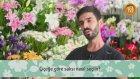 Çiçeğe Göre Saksı Nasıl Seçilir?