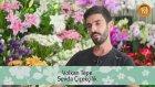 Çiçeklerin Yerini Sevmediği Nasıl Anlaşılır?