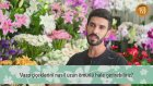 Vazo Çiçeklerini Nasıl Uzun Ömürlü Hale Getirebiliriz?
