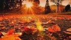 Yıldız Tezcan - Merhametsiz Sevgilim