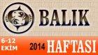 Balık Burcu Haftalık Astroloji Yorumu 6-12 Ekim 2014 Astrolog Demet Baltacı