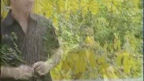 Gungor Yildiz - Yusuf Çakır - Kız Hani Peştemalin