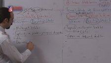 Lider Yayınları - Vatandaşlık Dersi 17