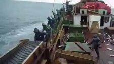 Balık Avlamada Level Atlamak