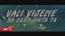 Vali Vijelie - Ba Sunt Viata Ta (Lyric Video)