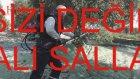 Zeytin Silkeleme - Zeytin Toplama Makinası