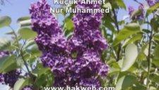 Küçük Ahmet   Nur Muhammed