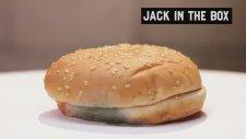 Ünlü Fast Food Restoranlarının Hamburgerleri Kaç Günde Bozuluyor?