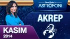 Akrep Burcu Aylık Astroloji Yorumu Kasım 2014