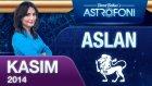 Aslan Burcu Aylık Astroloji Yorumu Kasım 2014