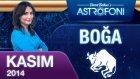 Boğa Burcu Aylık Astroloji Yorumu Kasım 2014