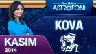 Kova Burcu Aylık Astroloji Yorumu Kasım 2014