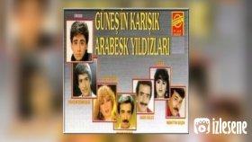 Mustafa Cengiz Onural - Bilgenin İşleri