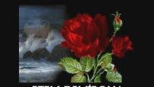 Ruhun Ezgileri - Endless Love Pan Flute