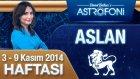 Aslan Burcu Haftalık Astroloji Yorumu 3 9 Kasım 2014