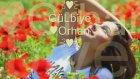 Mithat Körler - Beni Sensiz Bırakma GüLbiye Orhan 26