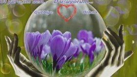 Selahattin Alpay - Seviyorum Gülüm Seni Gülbiye Orhan 26