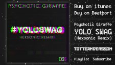 Psychotic Giraffe - Yolo Swag (Hexsonic Remix)