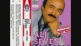 Ali Seven - Acılar İçinde