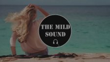 Sam Feldt & Kav Verhouzer - Hot Skin (Original Mix)