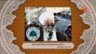 Müceddid Mahmud Efendi Hazretlerinin 31.12.1996 Tarihli Sohbeti Video Kaydı Lalegul Tv