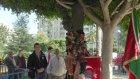 Ağaçta Ters Sallanarak Marş Söyleyen Dayı