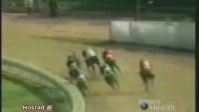 Feci At Yarışı Kazası