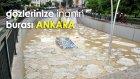 Yaran Ankara'nın Bug'ları Paylaşımları