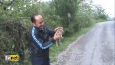 Avcıların Güldüren Domuz Avı