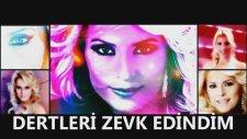 ***Ayşen Birgör - Dertleri Zevk Edindim***