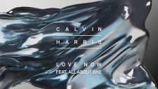 Calvin Harris ft. All About She - Love Now (Audio)
