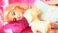 Barbie Ve Köpeği Güne Başlıyor - Lara Misafirliğe Geliyor - Barbie Evinde Evcilik Oyunu