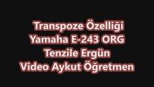 Transpoze Özelliği Yamaha E 243 Org Tenzile Ergün Taşına Bİlir Piyano