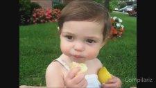 Sevimli Bebeklerin Limonla İmtihanı