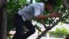 Liselere Göre ağaçtan iniş