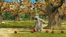 Elma Ağacı - Sakar Ayı Bernard Bear