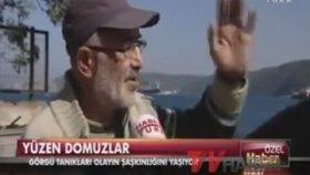 İstanbul Boğazında Yüzen Domuzlar