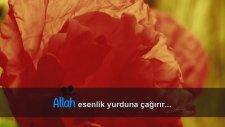 Ağlatan Muhteşem Bir Kiraat - Yunus Suresi (25-27)  Idrees Abkar (İdris Abkar) - Subhanallah