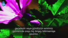 Idris Abkar - Yunus Suresi 24-27. Masaallah [ Ashabı Kehf ]