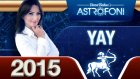 YAY Burcu 2015 genel astroloji ve burç yorumu videosu