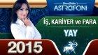 Yay Burcu İşpara Ve Kariyer 2015 Astroloji Burç Yorumu