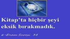 Kuranı Kerim Türkçe Meali Enam Suresi 38